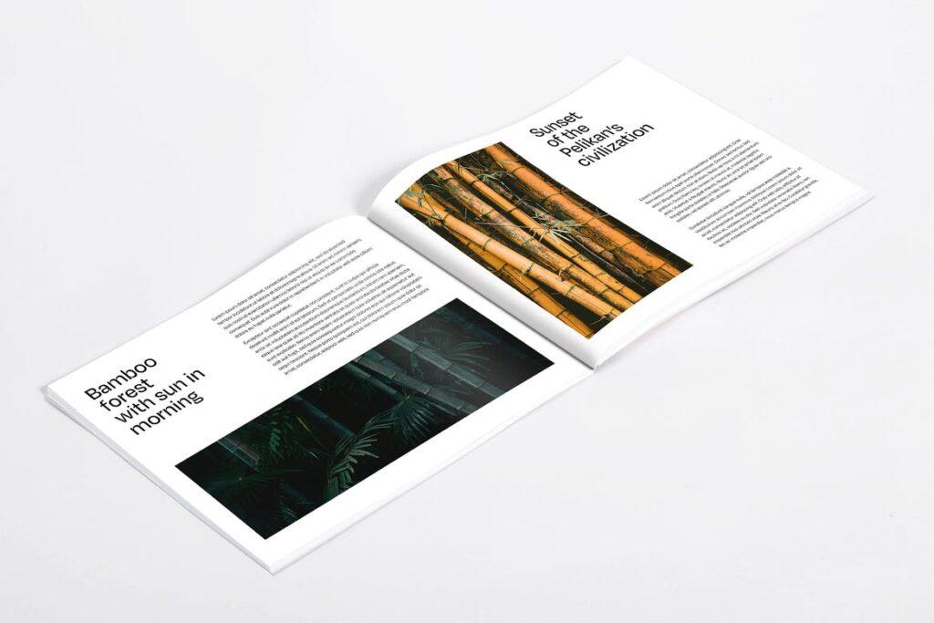 diseño publicitario y diseño de catálogos